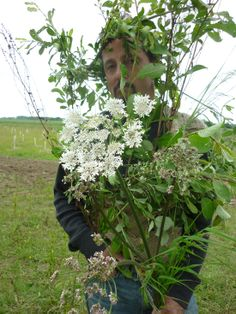 Camouflage activity out in the Hedgerows of the UK - we used willow, hogweed, rush and grasses.    http://wagglewoodsfamilies.kajabi.com/funnel_events/26910-badger-puppet