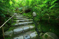 京都八瀬瑠璃光院の参道の綺麗な苔と緑