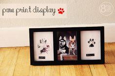 eight six eleven: paw print display [tutorial]