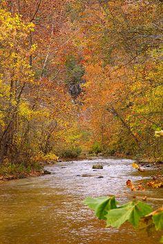 Fall...A Running River