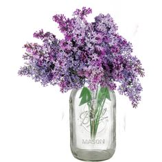 lilacs-PSBTMar14-Country Wedding-DBM.png ❤ liked on Polyvore featuring flowers, backgrounds, floral and home