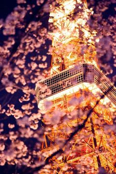 Stunning Tokyo Tower (10+ Pics)