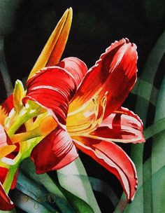 """""""Flaming Red Day Lily"""" - Original Fine Art for Sale - © Jacqueline Gnott"""