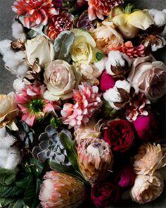 AphroChic: Kari Herer's Moody Botanical Prints