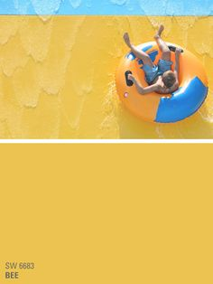 Sherwin-Williams yellow paint color - Bee (SW 6683)