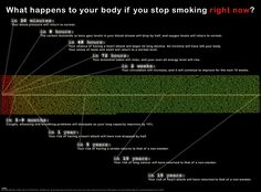 Need help to stop smoking? Look at the effects smoking, cigarettes & nicotine has on your body & lungs. The health effects of smoking are scary & unhealthy. Stop Smoking Benefits, Help Quit Smoking, Giving Up Smoking, Smoking Weed, What Happened To You, What Happens When You, Quit Smoking Timeline, Smoking Addiction, Stop Smoke