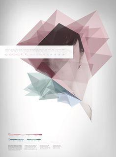 Alternative portraiture through info graphics