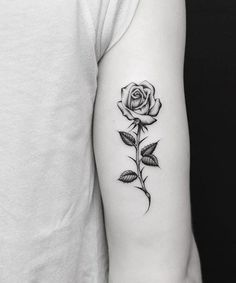 New High Definition Rose Flower Tattoos on Arm for Girls