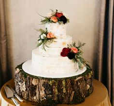 forest inspired cake