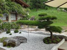 Beautiful Garden Design Idea With An Awesome Japanese Style 3 Garden Garden backyard Garden design Garden ideas Garden plants Japanese Garden Landscape, Small Japanese Garden, Front Garden Landscape, Japanese Tree, Japanese Garden Design, Landscape Design, Japanese Gardens, Topiary Garden, Garden Plants
