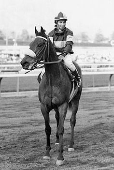 John Henry and Laffit Pincay, Jr. (March 9, 1975 – October 8, 2007) was an American Thoroughbred race horse who had 39 wins, with $6,591,860 in earnings. He was twice voted the Eclipse Award for Horse of the Year in 1981 and 1984, with his 1981 selection is the only one whereby the victor received all votes cast for that award. John Henry was also listed as #23 - Top 100 U.S. Racehorses of the 20th Century.