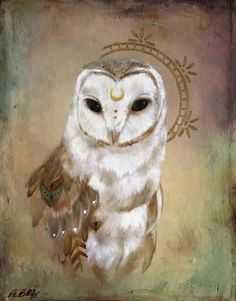 Beautiful moon owl!