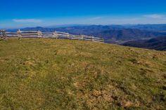 Meanderthals | Cataloochee Divide Trail to Hemphill Bald, Great Smoky Mountains National Park