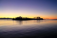 Haulashore Island, Nelson Harbour.