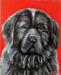 NEW ORIGINAL Painting Newfoundland Dog Art Pet Portrait REPAINTED 8x10 animal #Realism