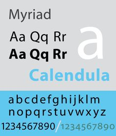 "Specimen of the typeface Myriad, Jim Hood. Myriad is a humanist sans-serif typeface designed by Robert Slimbach and Carol Twombly for Adobe Systems. The typeface is best known for its usage by Apple Inc., replacing Apple Garamond as Apple's corporate font since 2002. Myriad is easily distinguished from other sans-serif fonts due to its special ""y"" descender (tail) and slanting ""e"" cut. Myriad is similar to Frutiger."