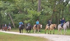 Groupon - $ 20 for a One-Hour Horseback-Riding Session for One at Sarah's Stables, Inc ($40 Value)   in Willow Springs. Groupon deal price: $20