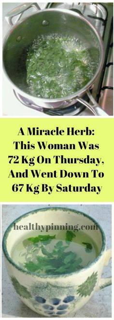 A Miracle Herb: This Woman Was 72 Kg On Thursday, And Went Down To 67 Kg By Saturday – Healthy Pinning
