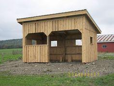 Alpacas - Barn Design... Add storage room