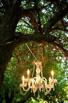 love..I need a chandelier  for my garden!!! oh ya and a big tree to hang it on and no wind! LOL