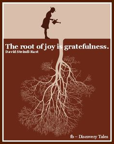 The root of joy is gratefulness. Joy Quotes, Rumi Quotes, Gratitude Quotes, Attitude Of Gratitude, Life Quotes, Inspirational Quotes, Grateful, Thankful
