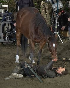 Viggo bonded so much with the horse he rode in the Lord of the Rings series that after they finished filming, he purchased the horse from its owner.