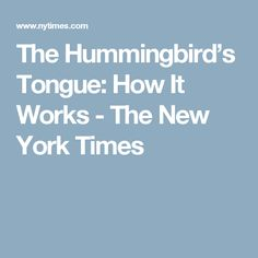 The Hummingbird's Tongue: How It Works - The New York Times