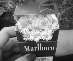 is bad for your health. Smoking is bad for your health. The post Smoking is bad for your health. appeared first on Trendy.Smoking is bad for your health. The post Smoking is bad for your health. appeared first on Trendy. Street Style Photography, Grunge Photography, White Photography, Smoke Photography, Minimalist Photography, Photography Flowers, Urban Photography, Photography Poses, Newborn Photography