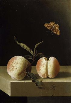 https://flic.kr/p/ah5Wte | Adriaen Coorte (c.1693-95) 'Still life with two peaches and a butterfly' paper on panel, Royal Picture Gallery, Mauritshuis | Adriaen Coorte [Dutch Golden Age painter, ca.1660-1707]  Adriaen Coorte's collected works comprises more than 60 signed paintings, almost all of which are dated between 1683 and 1705. His manner of painting was highly refined, and his works small in scale.  Initially Coorte painted more traditional subjects, such as vanitas still lifes…