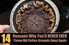 14 Genius Ways To Recycle Used Coffee Grounds...this is all I needed to keep ants out of my tomatoes?!  WHY DID I NOT KNOW THIS????!
