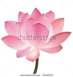 Beautiful pink lotus flower, isolated on white background. Greeting or invitation card. Invitation Card Design, Invitation Cards, Invitations, Pink Lotus, Lotus Flower, Spring Wallpaper, Lotus Design, Royalty Free Stock Photos, Stylish