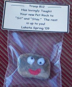 pet rock swap for Girl Scouts Girl Scout Swap, Girl Scout Troop, Brownie Girl Scouts, Scout Leader, Geocaching, American Heritage Girls, Girl Scout Activities, Girl Scout Camping, Girl Scout Juniors