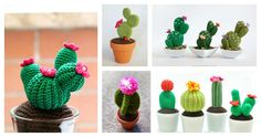 Do you want to have some beautiful cactus which never needs watering and never dies? You can crochet some with Desert Cactus Amigurumi Crochet Patterns.