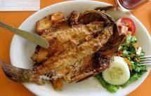 10 platos típicos de Junín: Trucha frita