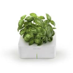 This is an amazing idea for all of us that try to grow herbs on the kitchen windowsill. Click & Grow is an electronic smartpot.