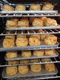 Hot from the oven ....cheese scone anyone?