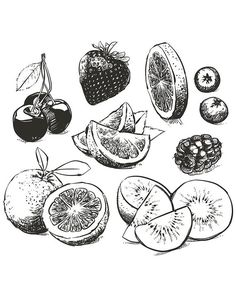 Off Sale Hand drawn collection of fruits sketch outline. Orange, berries, lime with clipping path. Fruits Drawing, Food Drawing, Fruit Sketch, Food Sketch, Drawing Sketches, Art Drawings, Tattoo Drawings, Fruit Tattoo, Fruit Vector