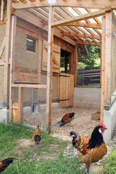 Kaltscharraum Hühnerstall Voliere für Hühner