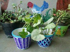 SAJAVAT: Aurea Blue Pottery