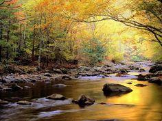 scenery pictures   beautiful scenery wallpaper for desktop green farm scenery wallpaper ...