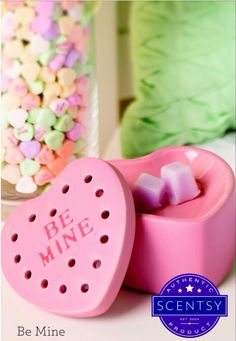 Get your loved one a little special treat.    https://kellyvann.scentsy.us/?partyId=297227340