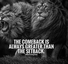 Lion Motivational Quotes Best Of 86 Inspirational Quotes that Will Change Your Life Boomsumo Quotes Lion Quotes, New Quotes, Wisdom Quotes, Great Quotes, Quotes To Live By, Funny Quotes, Come Back Quotes, Quotes That Inspire, Daily Quotes