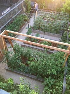 4 Prodigious Tips: Backyard Garden Deck Small Pools backyard garden boxes cold frame.Backyard Garden Wedding Fairy Tales backyard garden house tips.Ba… - All About Gardens Veg Garden, Garden Types, Garden Trellis, Garden Care, Garden Beds, Garden Walls, Vegetable Gardening, Privacy Trellis, Clematis Trellis