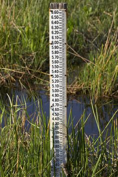 Water level measuring stick in the Everglades National Park,Florida.