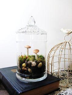 Vintage Apothecary Terrarium: Diamond Cut Lid and Handmade Mushrooms Terrariums, Garden Terrarium, Succulent Terrarium, Terrarium Jar, Terrarium Ideas, Air Plants, Indoor Plants, Glass Apothecary Jars, Paperclay