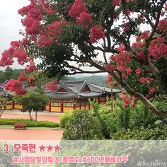 강릉 여행지 총정리_44선 : 네이버 포스트 Sidewalk, Mansions, House Styles, Home Decor, Decoration Home, Manor Houses, Room Decor, Side Walkway, Villas