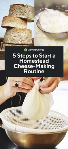 5 Steps to Start a Homemade Cheese-Making Routine If you are considering making your own cheese, read here about the 5 vital steps required to get you ready for new homestead cheese making routine. Goat Milk Recipes, Cheese Recipes, Brie, Cheddar, Cooking Cheese, Cheese Maker, Smoked Cheese, Homemade Cheese, How To Make Cheese