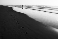 In Pursuit, Leiden, World's Biggest, Photo Galleries, My Face Book, Beach, Water, Loneliness, Photography