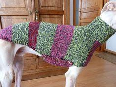 Knitted Coat Pattern, Crochet Dog Sweater Free Pattern, Knit Dog Sweater, Dog Sweaters, Coat Patterns, Knitting Patterns, Italian Greyhound, Old Dogs, Dog Coats