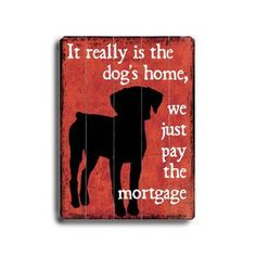 It really is the dog's home, we just pay the mortgage.